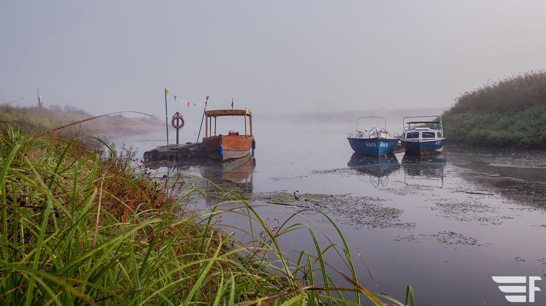 Odra, okolice Ścinawy